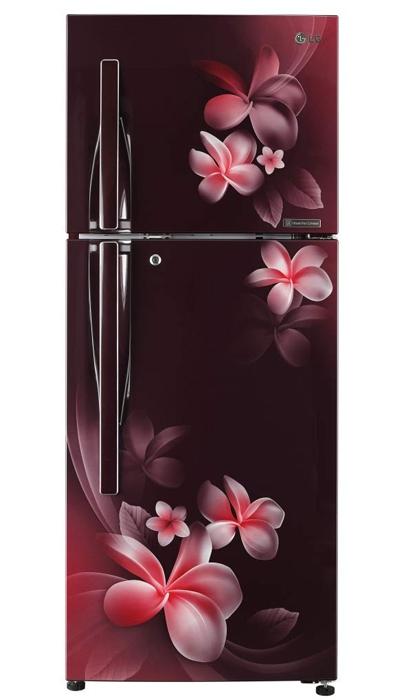 LG Inverter Double Door Refrigerator