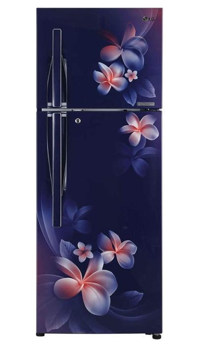 LG Linear Double-Door Refrigerator