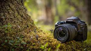 Things to know when you use a DSLR Camera